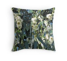 Eucalyptus globulus, Tasmanian Blue Gum. Throw Pillow