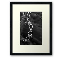 Forest Ribbon BW Framed Print