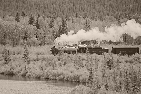 Old Steam Locomotive #2816 by Vickie Emms