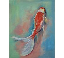 Pearl Banded Koi Photographic Print