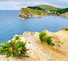 Ahhh !!  Lulworth Cove by Colin J Williams Photography