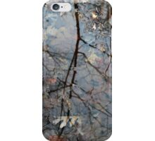 Wetland Reflections 30 iPhone Case/Skin