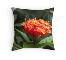 Flame of the woods Throw Pillow