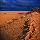 Rippled Sand by Stephen Ruane