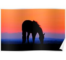 Sunset Silhouette 4 Poster