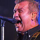 Aussie Rockers by Darren Stones