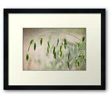 Nature's Charms Framed Print