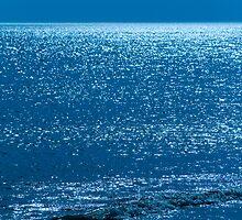 Jekyll Island Ocean Blue by BenSellars