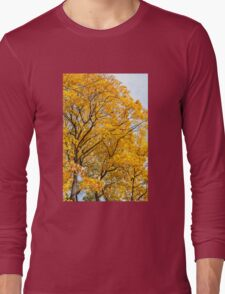 Yellow leaves autumn trees Long Sleeve T-Shirt