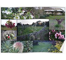 Hint of spring in Gippsland Victoria Poster