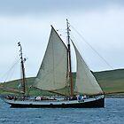 Tall Ships Race 2011 by Lynn Bolt