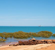 Broome, Roebuck Bay Western Australia by Virginia  McGowan