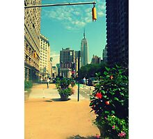 picture perfect esb Photographic Print