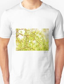 Willow Salix Alba tree detail T-Shirt