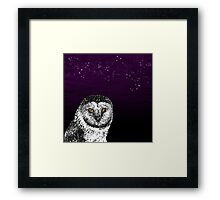Birds Of Prey Barn Owl  Framed Print