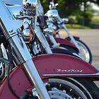Bikes by Crystal Davis Photography