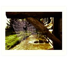 Spider House Art Print