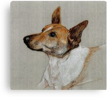 Rocky the rescue dog in crayon Canvas Print