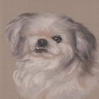One-eyed Bandit in pastels, #2 by Pam Humbargar