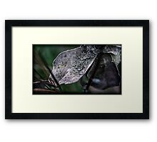 in the field there teemed life Framed Print