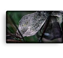 in the field there teemed life Canvas Print