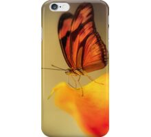 Orange butterfly on yellow and red flower iPhone Case/Skin