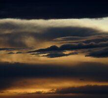 Stormy weather... by LivWildlife