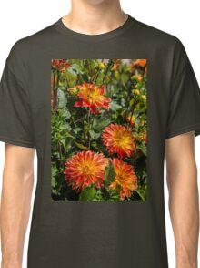 France. Rigny-Ussé. Château d'Ussé. Garden. Flowers. Classic T-Shirt