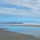 Pacific Coast of Vancouver Island by hummingbirds