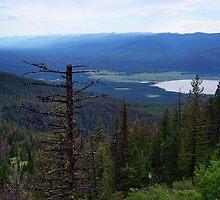 Swan Lake (Montana, USA) by rocamiadesign