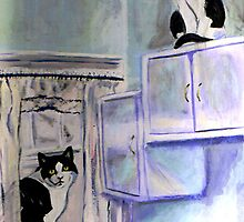 Black and White Cats by hickerson
