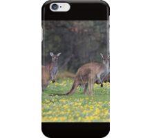 kangaroos on yellow flowers iPhone Case/Skin