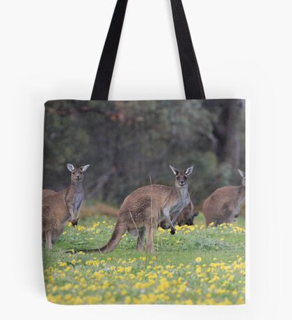 kangaroos on yellow flowers Tote Bag