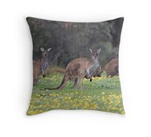 kangaroos on yellow flowers Throw Pillow