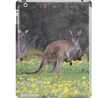 kangaroos on yellow flowers iPad Case/Skin