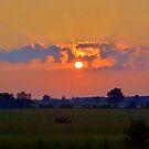 Misty Sunrise. by vette