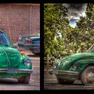 VW Came to Visit Pair 1 by rjcolby