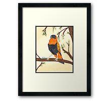Orange Bishop Framed Print