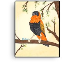 Orange Bishop Canvas Print