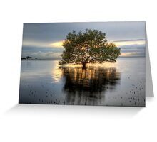 Lights of Dawn Greeting Card