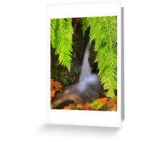 Fern Fantasy Waterfall Greeting Card