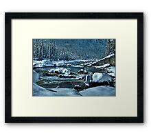 Winter  World Framed Print