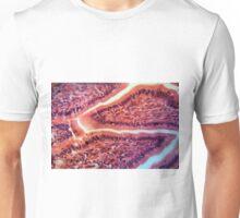 Intestine Cells under the Microscope Unisex T-Shirt