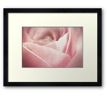 Fleur [Print and iPhone / iPod Case] Framed Print