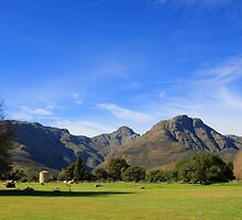 Stellenbosch postcard days. by Gavin Craig