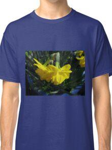 Nodding Daffodils Classic T-Shirt