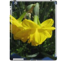 Nodding Daffodils iPad Case/Skin