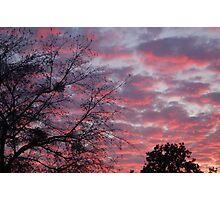 The Sky Is Creepy Photographic Print