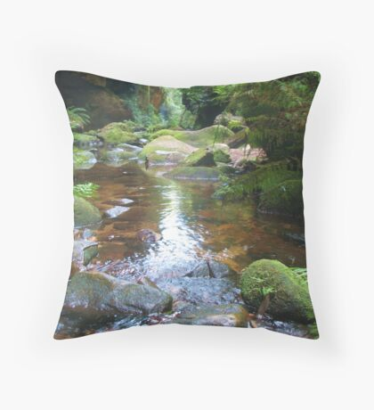 Light in the Canyon Throw Pillow