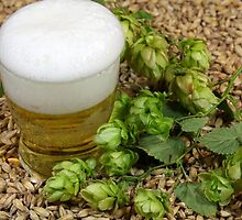 Beer, hops and malt by Zosimus